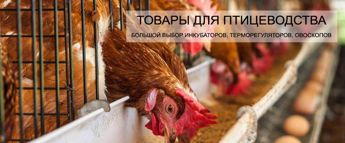 Товары для птицеводов