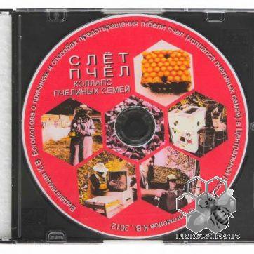 Видео диск «Слет и гибель пчел», Богомолова К.В.