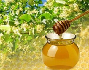 Мед липовый