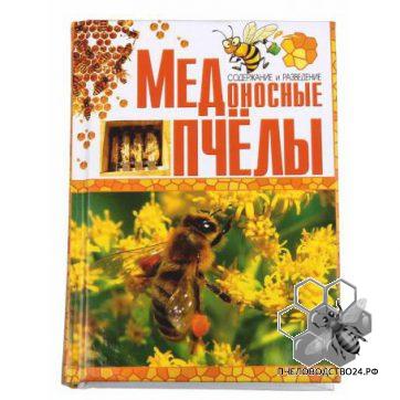 Медоносные пчёлы. Содержание и разведение