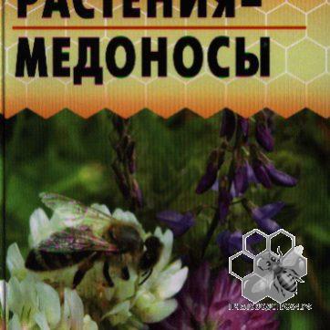 Растения - медоносы