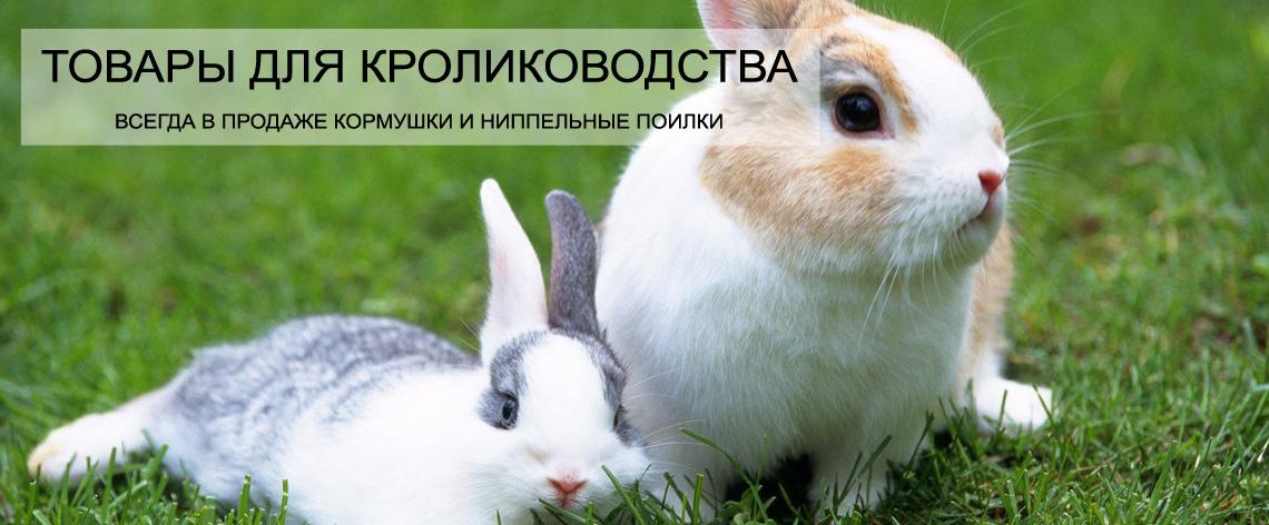 Товары для кролиководства